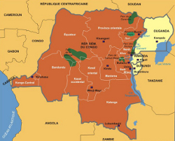 Un ex-rebelle congolais disparu au Rwanda depuis mars 2010, selon Amnesty