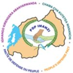 PDP - Imanzi