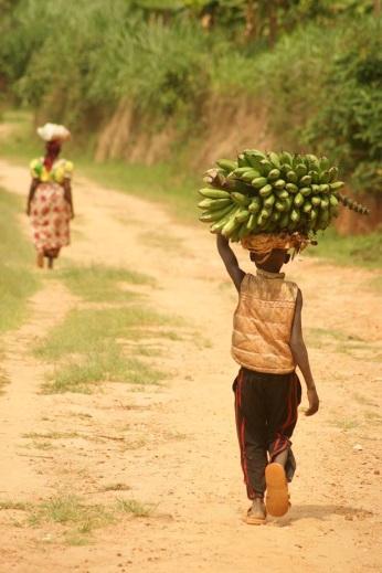 Échos du Rwanda