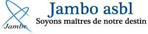 Il y a 20 ans le Rwanda tombait dans un abîme, le président de Jambo ASBL s'exprime