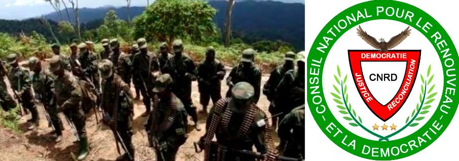 Rwanda – Francine Umubyeyi (CNRD): » L'option militaire nous est imposée par Paul Kagame»